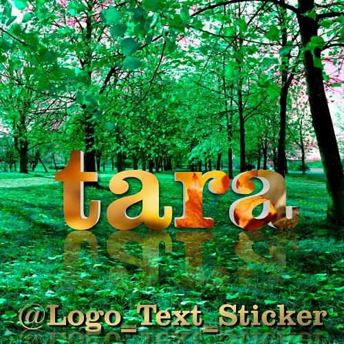 عکس اسم تارا   عکس پروفایل اسم تارا